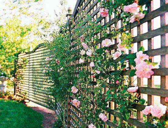 Striking modern home design exterior 2013 #home #fencedesigns #fence #outdoor