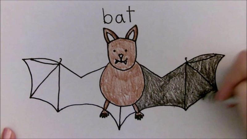 Bat Drawing