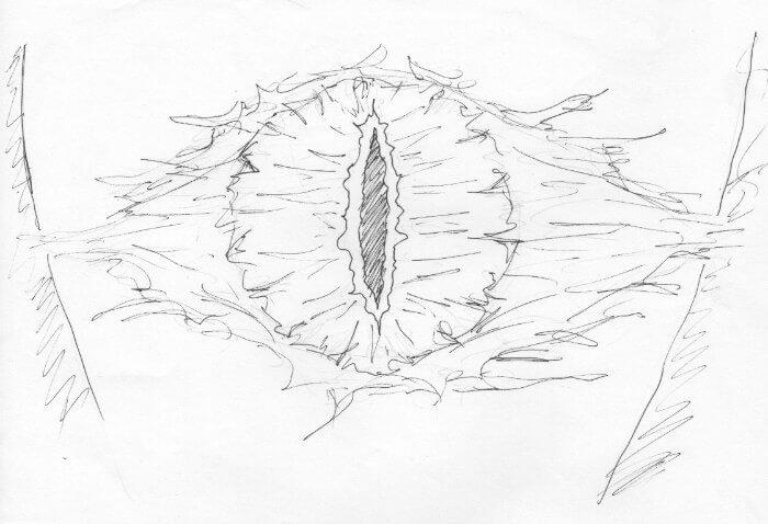 The Watchful Eye of Sauron