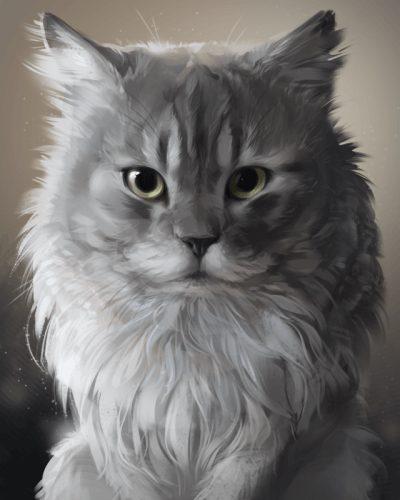 Persian Cat Cute Animal
